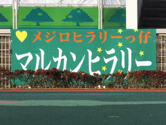 20151224 大井2R 2歳新馬 マルカンヒラリー 01