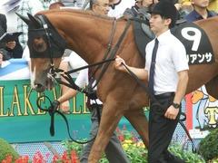 20180930 中山9R サフラン賞 2歳牝馬500万下 ポリアンサ 08