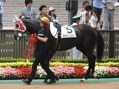 20140621 東京4R トマトリコピン 04