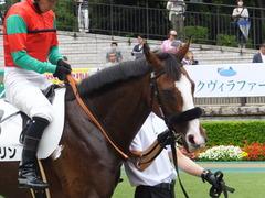 20170625 東京1R 3歳牝馬未勝利 プンメリン 21