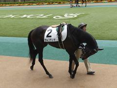 20160423 東京4R 3歳未勝利 ラルゴランド 03
