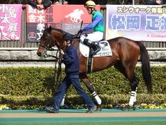 20180217 東京4R 4歳上障害未勝利 トーセンカナロア 10