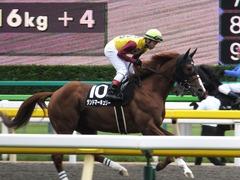 20161009 東京10R テレビ静岡賞(1600) ランドマーキュリー 12