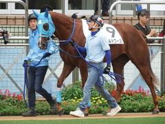 20180922 中山2R 2歳牝馬未勝利 ヴァルドワーズ 03
