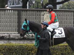 20160130 東京3R 3歳未勝利 アイルーロス 13
