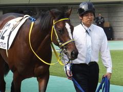 20141026 東京4R ラッシュアタック 07