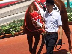20160618 阪神8R 3歳上牝馬500万下 レーヌドブリエ 10