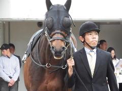 20180415 中山12R 春興S(1600) プロディガルサン 06