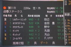 20200111 中山11R 迎春S (3勝クラス) ホウオウドリーム 02