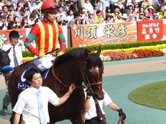 20150607 東京11R 安田記念(G1) モーリス 13