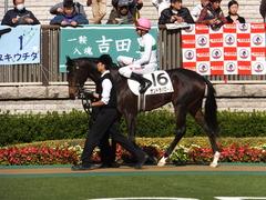 20131116 東京 サンドラバローズ11