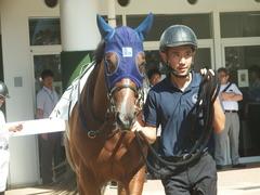 20190928 中山5R 2歳牝馬メイクデビュー アルソリート 05
