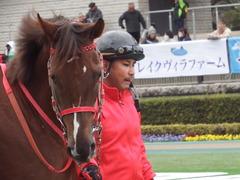 20190126 東京10R クロッカスS 3歳OP オトナノジジョウ 09