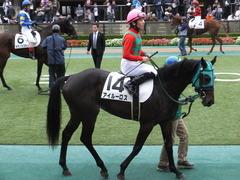 20151123 東京1R 2歳未勝利 アイルーロス 07