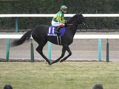 20141228 中山10R 有馬記念 サトノノブレス 08