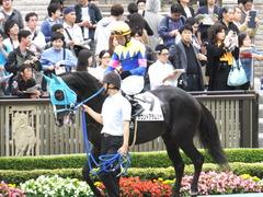 20151010 東京4R 3歳上障害未勝利 サウンドアラムシャ 08