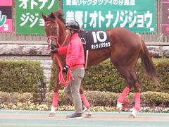 20190126 東京10R クロッカスS 3歳OP オトナノジジョウ 04
