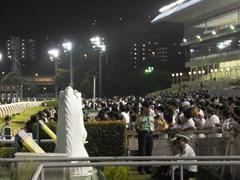 20140730 大井競馬場 人大杉
