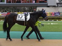 20160130 東京4R 3歳未勝利 アタンドリール 08