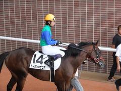 20160903 札幌12R (500) トーセンカナロア 15