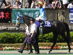 20140511 東京11R NHKマイルカップ(G1)アドマイヤビジン16