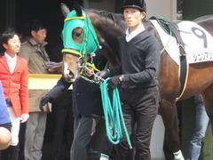 20170319 中山4R 3歳メイクデビュー ジュンマシュウ 08
