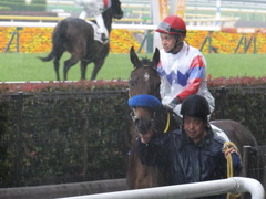 20170513 東京5R 3歳未勝利 トッテモイイコ 09
