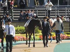 20141122 東京3R コスモポッポ 02