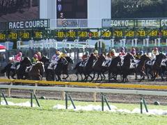20150131 東京2R 3歳未勝利 コスモポッポ 13