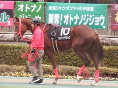 20190126 東京10R クロッカスS 3歳OP オトナノジジョウ 10