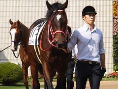 20151024 京都5R 2歳メイクデビュー ピッツバーグ 08