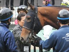 20170205 東京1R 3歳未勝利 メガポリゴン 14
