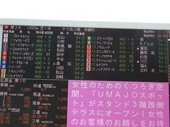 20180331 阪神3R 3歳未勝利 テンノカガヤキ 02