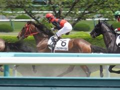 20170603 阪神3R 3歳未勝利 フェアチャイルド 28