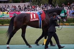 20191103 東京11R AR共和国杯(G2) パリンジェネシス 10