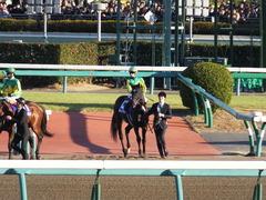 20161225 中山12R 有馬記念(G1) サトノノブレス 05