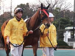 20151224 大井2R 2歳新馬 マルカンヒラリー 05