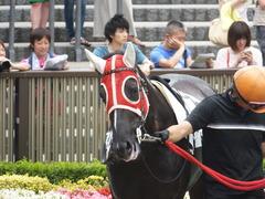 20140621 東京4R トマトリコピン 05