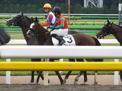 20170625 東京1R 3歳牝馬未勝利 プンメリン 30