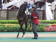 20180623 東京12R (500) アドマイヤシナイ 03