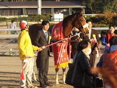 20170215 大井11R 金盃(S2) ユーロビート 34