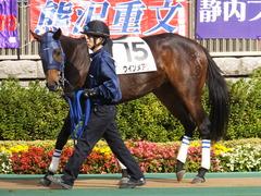 20141116 東京2R ウィンメアリー 02