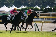 20191110 東京2R 2歳牝馬未勝利 ミヤコシャンティ 19