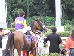 20140915 大井11R 東京記念 ユーロビート 22