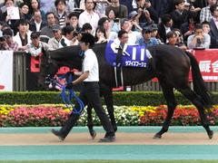 20141102 東京11R天皇賞(秋) ラブイズブーシェ 04