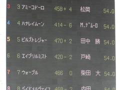 20170506 東京5R 3歳牝馬500万下 ビルズトレジャー 02