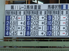 20161215 名古屋11R 名古屋GP(Jpn2) ユーロビート 02