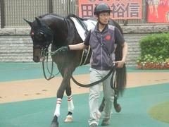 20190622 東京3R 3歳未勝利 ショウナンサジン 15