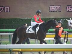 20190421 東京8R (500) ラプターゲイル 16