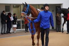 20200118 中山9R 菜の花賞 3歳牝馬1勝クラス シホノレジーナ 09